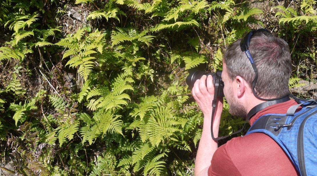 Voluntario fotografiando reptiles en nuestro voluntariado de Conservación del Himalaya.